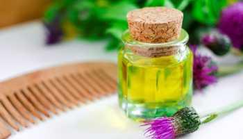 Репейное масло для волос польза и вред