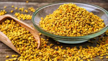 Пчелиная пыльца свойства и применение