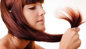 Сухие кончики волос лечение в домашних условиях