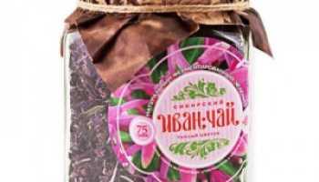 Иван чай лечебные свойства применение и противопоказания