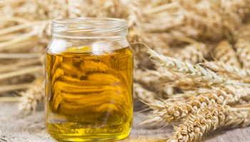 Косметическое масло зародышей пшеницы свойства и применение
